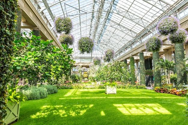 Szklany dach ogrodu botanicznego.