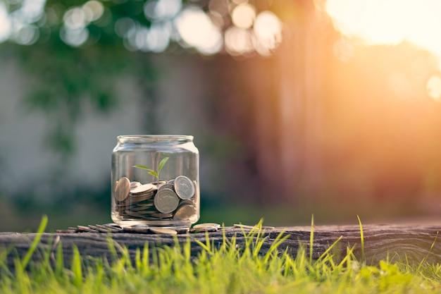 Szklany garnek z monetami w ogrodzie