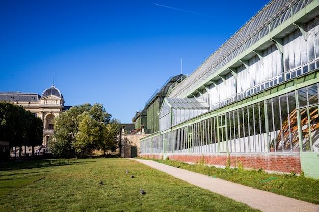 Szklarnia w jardin des plantes ogródzie botanicznym, paryż, francja