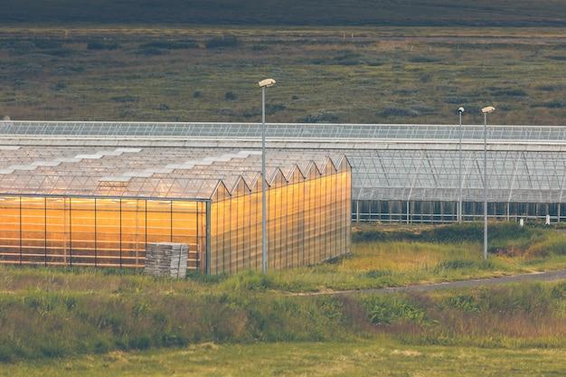 Szklarnie geotermalne w północnej islandii