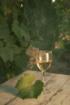 Szkło z białym winem w winnicy na starym stole