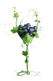 Szkło z winogronami z winorośli na białym tle