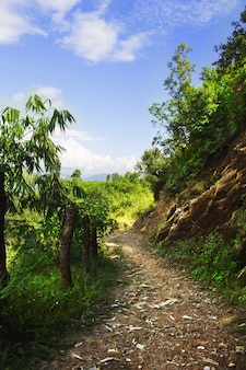 Szlak górski w himalajach. naturalny krajobraz. pokhara, nepal