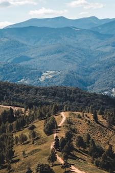 Szlak górski, zielona łąka i odległe góry, dolomity, włochy