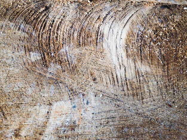 Szorstka drewniana tekstury powierzchnia