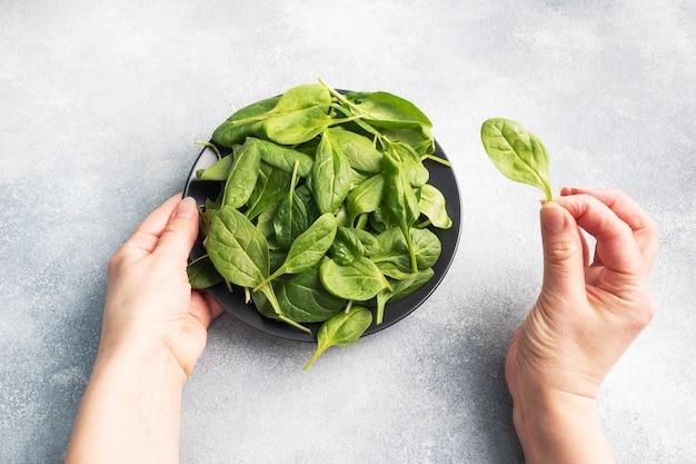 Szpinak zielonych świeżych liści na czarnym talerzu. kobiece ręce, trzymając w ręku talerz i liść szpinaku.