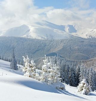 Szron zimowy i pokryty śniegiem krajobraz z widokiem na goverla mount