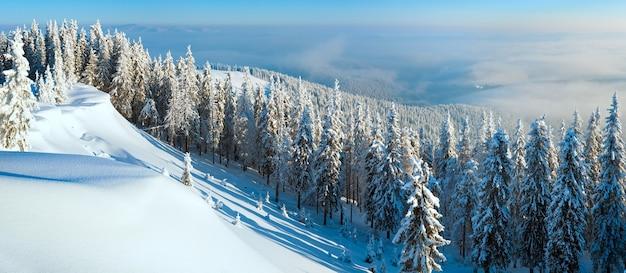 Szron zimowy i pokryty śniegiem szczyt wzgórza z jodłami i zaspami śnieżnymi