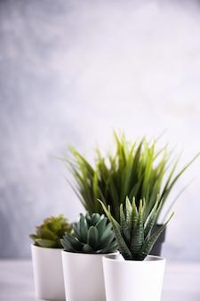 Sztuczna kwiat trawy różna forma w garnka zakończeniu up z kopii przestrzenią i tekstem
