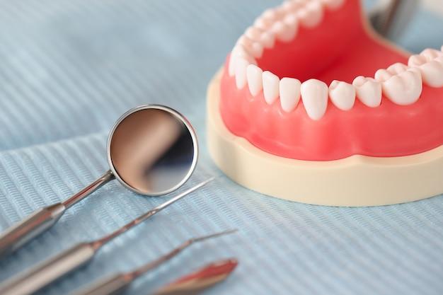 Sztuczna szczęka dentystyczna i instrument dentystyczny na koncepcji leczenia stomatologicznego na stole