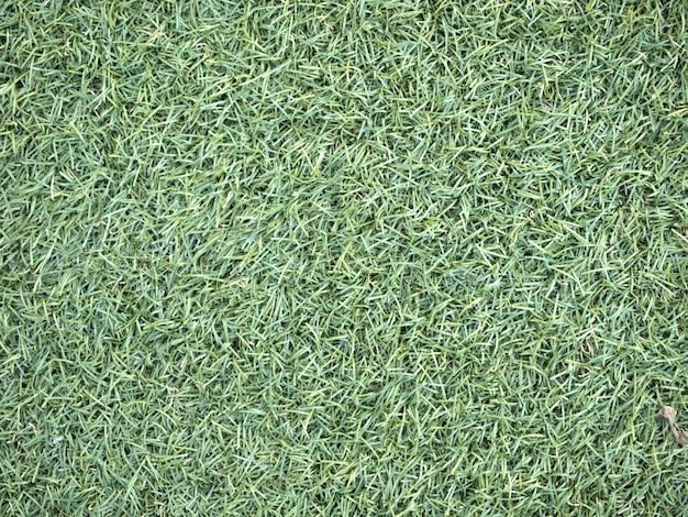 Sztuczna trawa pole widok z góry tekstury