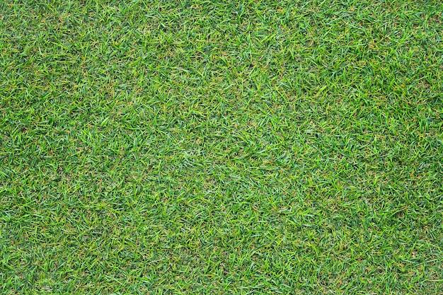 Sztuczna zielona trawa tekstura z filtrem vintage może być używana jako tło