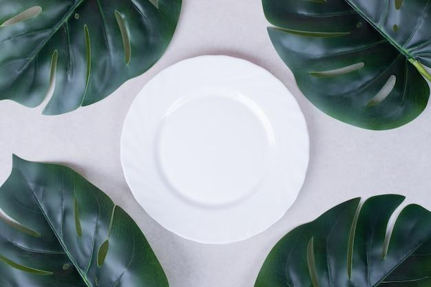 Sztuczne zielone liście i biały talerz na białej powierzchni.