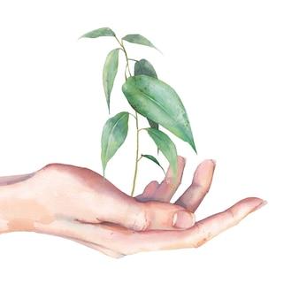 Sztuka światowego dnia środowiska. akwarela ilustracja ekologia. ręka z zieleni flancą odizolowywającą na białym tle.