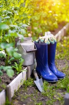 Szufelka do kaloszy i narzędzia po pracach w ogrodzie wśród łóżek