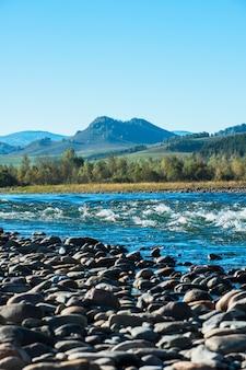 Szybka halna rzeka w altay