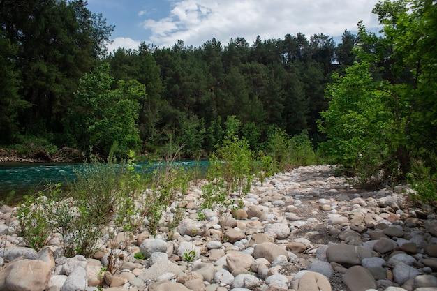 Szybka rzeka z bystrzami wysoko w górach