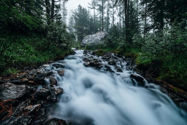 Szybki górski potok w ciemnym lesie. strumień kaskadowy w lesie wśród gęstych zarośli i drzew iglastych. duża skała w pobliżu małej rzeki. tajemniczy leśny krajobraz z ruchem rozmazany wody rzeczki