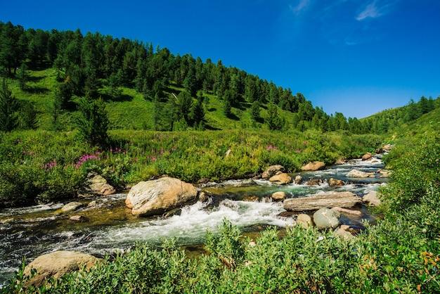 Szybki strumień wody z górskiego potoku wśród głazów w jasnym świetle słonecznym w dolinie.