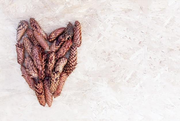 Szyszki jodły w kształcie serca na szorstkiej powierzchni.