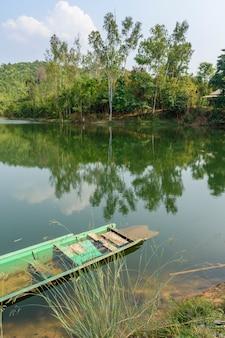 Tadpoles na małej rzece