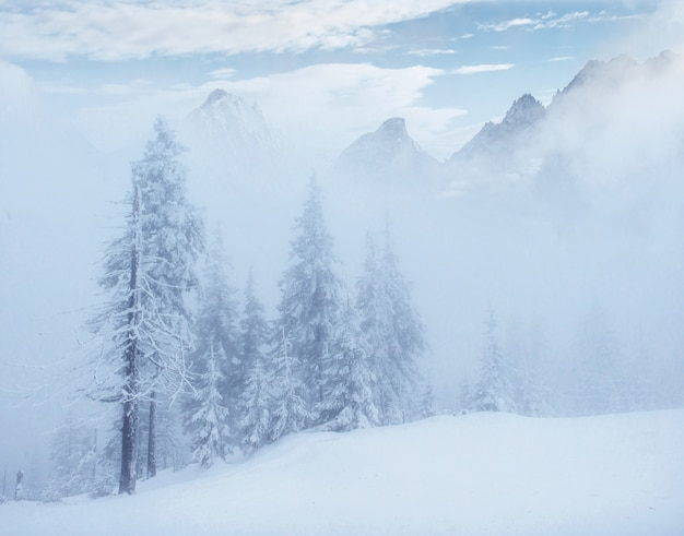 Tajemniczy zimowy krajobraz majestatyczne góry zimą.