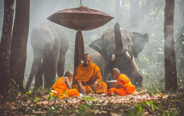 Tajlandzcy mnisi studiujący w dżungli ze słoniami