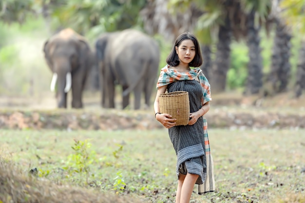 Tajlandzka kobieta w tradycyjnej tajskiej odzieży pozuje podczas gdy pozuje jako słoń na jej ryżowych polach.