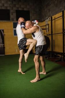Tajscy bokserzy ćwiczący boks