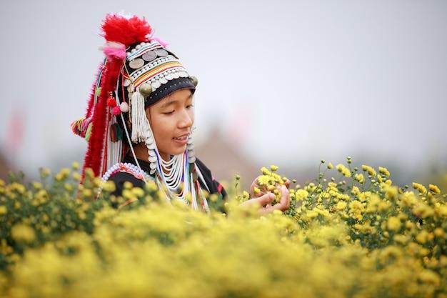 Tajskie kobiety górskie karen w dziedzinie roślin kwiatowych chryzantem w rolniczych chiang mai tajlandii