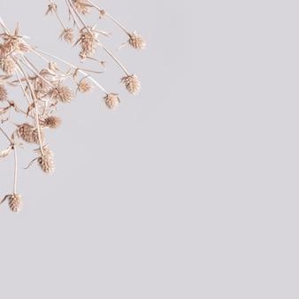 Tapeta w kwiaty w odcieniu ziemi