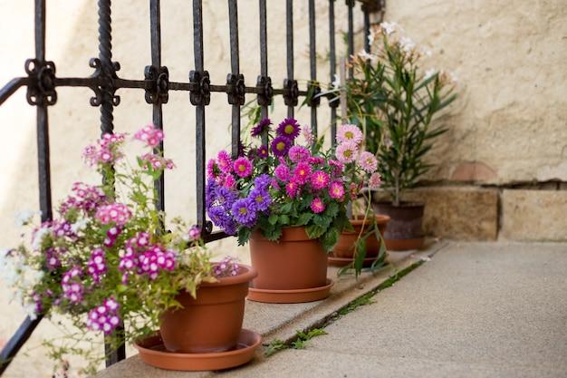 Taras z kwiatami w doniczkach obraz z selektywnej ostrości
