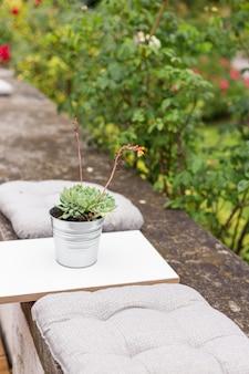 Taras ze stołem w kawiarni lub w domu, doniczkowe sukulenty na zewnątrz, koncepcja projektowania krajobrazu