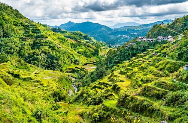 Tarasy ryżowe banaue - północny luzon na filipinach.