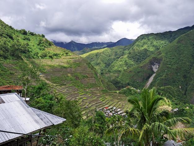 Tarasy ryżowe w banaue filipiny