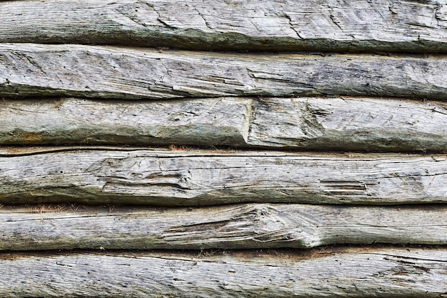 Tarcza z dużą liczbą równoległych faktur drewnianych bali