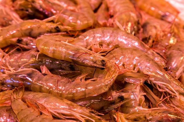 Targ ryb i owoców morza w słynnej boqueria w barcelonie w hiszpanii