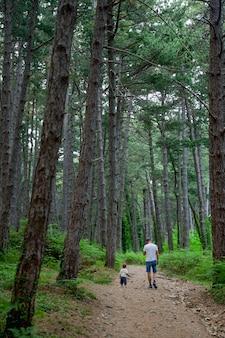 Tata i synek spacerują po letnim parku sosnowym lasem i paprociami