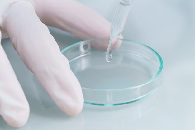 Technik naukowiec analizujący próbkę krwi na tacy w laboratorium w celu przetestowania jej pod kątem covid, covid-19, analizy wirusa koronawirusa