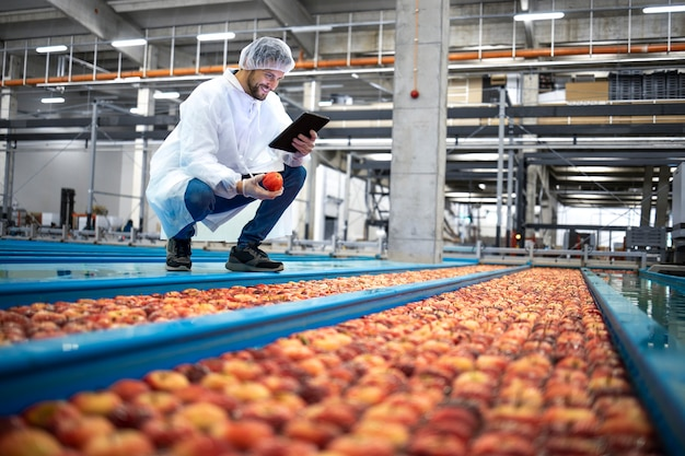 Technolog z tabletem stojącym przy przenośnikach zbiorników na wodę wykonujący kontrolę jakości produkcji owoców jabłek w zakładzie przetwórstwa spożywczego.