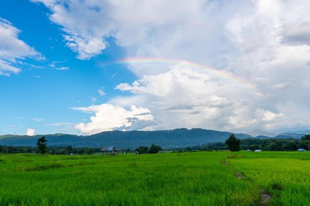 Tęcza na pięknym niebie nad górą z polem rolniczym