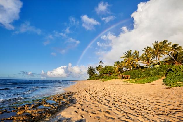 Tęcza nad popularnym miejscem do surfowania sunset beach, oahu, hawaje