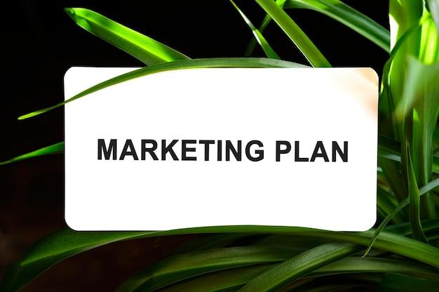 Tekst planu marketingowego na białym tle otoczony zielonymi liśćmi