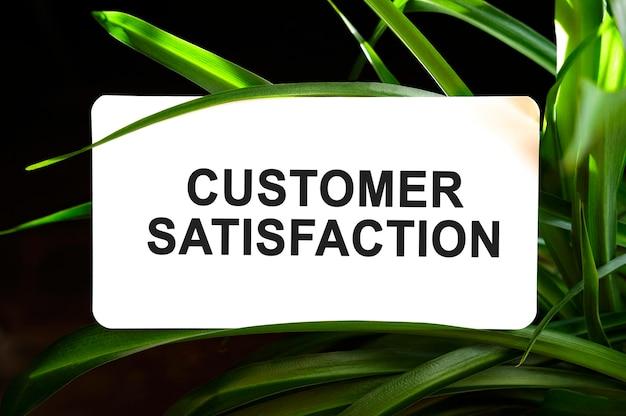 Tekst zadowolenia klienta na białym tle otoczony zielonymi liśćmi