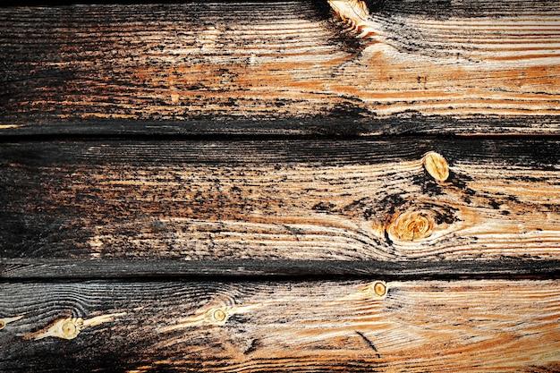 Tekstura ciemnobrązowego starego drewna z gałązką i starym zardzewiałym gwoździem