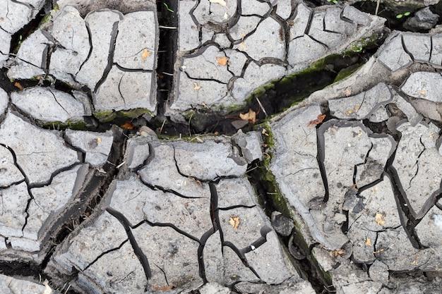 Tekstura gleby. pęknięcia w suchej ziemi. suszone błoto. środowisko naturalne.