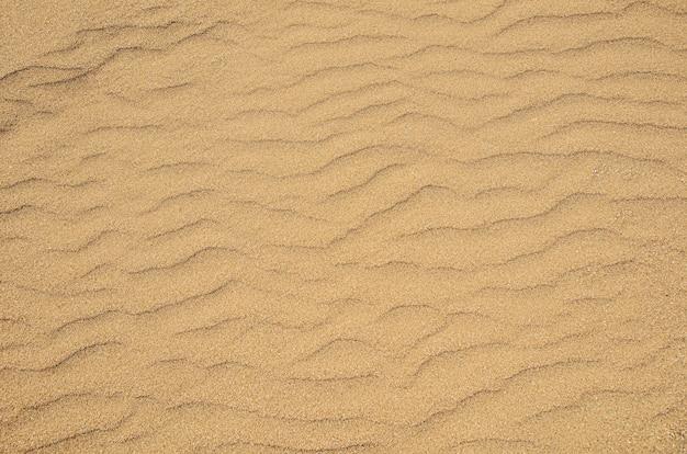 Tekstura grubego żółtego piasku na tle plaży