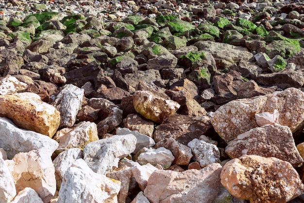 Tekstura kamieni pokrytych różnymi mchem w pobliżu morza