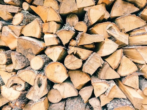 Tekstura kłody drewna