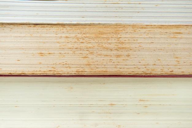 Tekstura książek z pleśnią, mokro i kurz